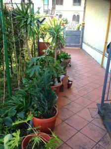 Casa indipendente in vendita a Prato in Via San Martino Per Galceti