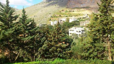 Villa in affitto a Palermo in Via Celona