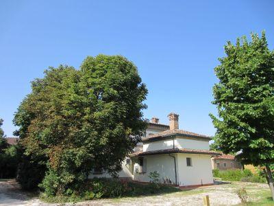 Villa in vendita a Ravenna in Via Salara Comunale