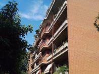Appartamento Vendita Crescentino