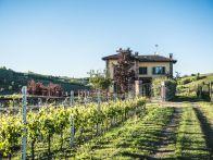 Villa Vendita Nizza Monferrato