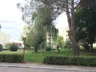 Appartamento Vendita Perugia  Prepo, San Sisto, Santa Sabina
