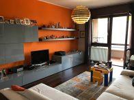 Appartamento Vendita Monza  Via Lecco, Viale Libertà, Amati, Stadio