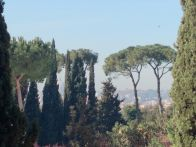 Appartamento Affitto Roma  Parioli, Flaminio