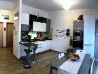 Appartamento Vendita Livorno  Collina, Petrarca, Porta a Terra