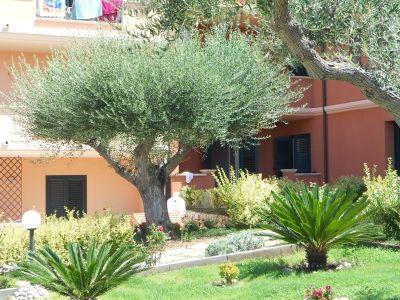foto Appartamento Vendita Ricadi