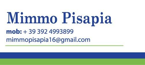 Domenico Pisapia
