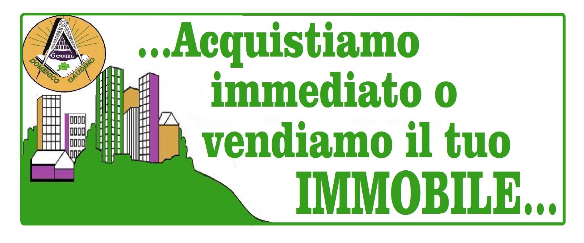 Geom. Domenico Gaudino